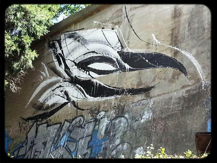 Streetart by Shida artist of a Bird like creature on a high concrete Wall