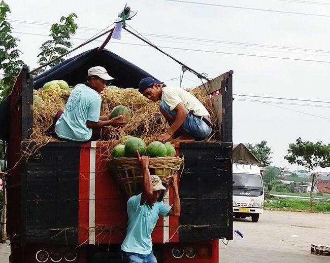 People Adult Day Adults Only Men Sky Truck Watermelon carry Johar indonesia Semaranghits Semarangku Semarang , Indonesia Pasar market Activity hardwork Young Women Women Tree Young Adult Outdoors Senior Men Nature sacrifice