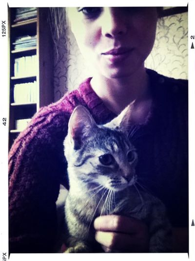 Kici Cat