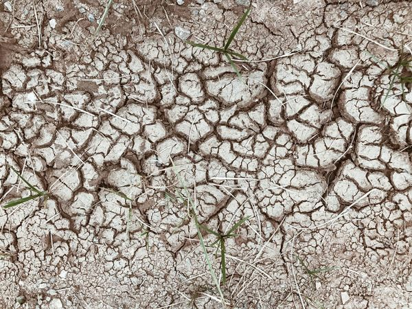 Cracked earth or Cracked ground. It surface cracked of mud on ground Desert Textured  Textures And Surfaces Backgrounds Broken Broken Ground Crack Crack Earth Crack Ground Crack Soil Cracked Dry Dry Ground Dust Ground Mud Rough Soil On The Ground Surface Wallpaper