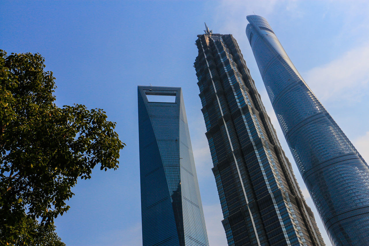 architecture, built structure, skyscraper, modern, building exterior, low angle view, tall - high, development, city, sky, day, growth, outdoors, no people, blue, tree, travel destinations, office park