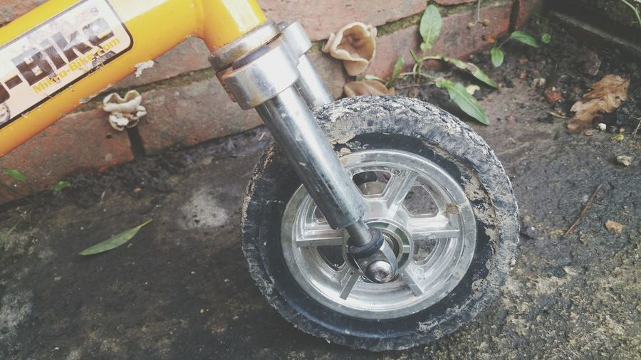 Mini Bike Micro Bike Forks Suspension Smallest Bike Small Bike Wheel Bike Wheel Bike Tyre
