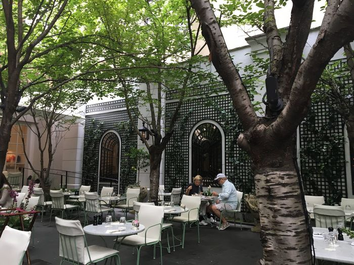 Places Lauduree Laudureenyc Garden Redtaurant French Restaurant