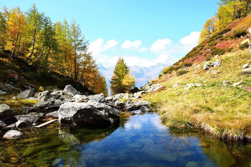 Alps Water Sky