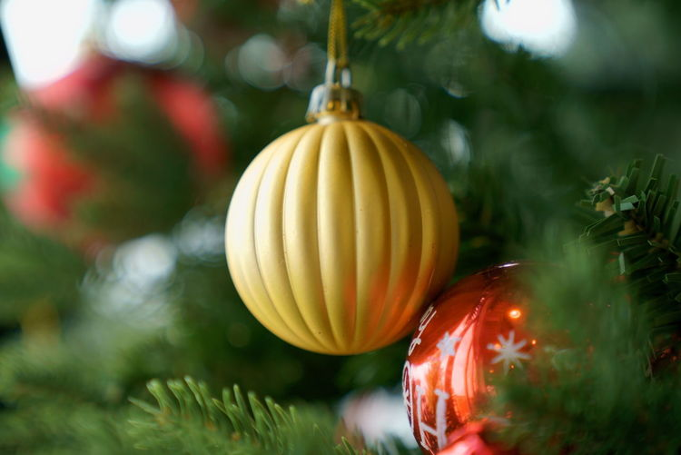 Circle Cymbol Winter Close-up Cristmas Cristmas Symbol Festival Gold Circle Gold Colored Press For Progress Mobility In Mega Cities Colour Your Horizn EyeEmNewHere