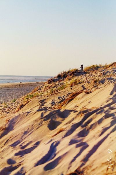 Dunes Beach Sea Water Outdoors Beauty In Nature Nature Sable