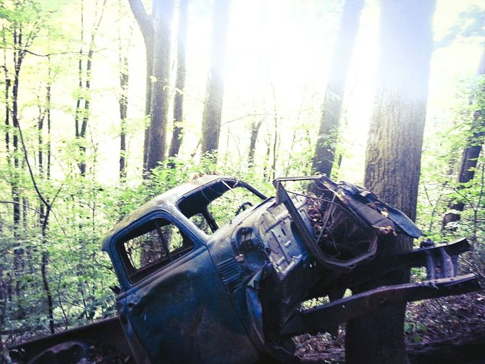 No Location Needed Abandoned Appalachian Mountains Nationalpark OpenEdit Tenessee