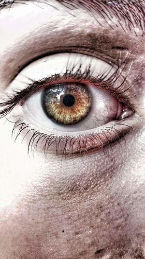 Human Eye Girl Eyes Looking At Camera Circle
