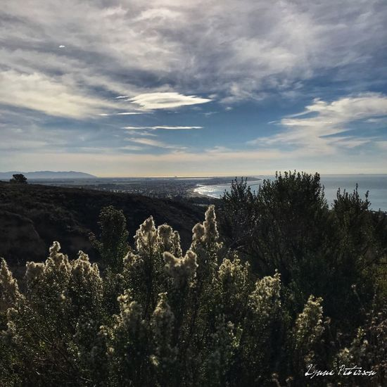 Ventura 🖤 Beauty In Nature Sky Nature Outdoors Horizon Over Water Ocean Photooftheday Picoftheday EyeEmNewHere 365project No People California Ventura Nature