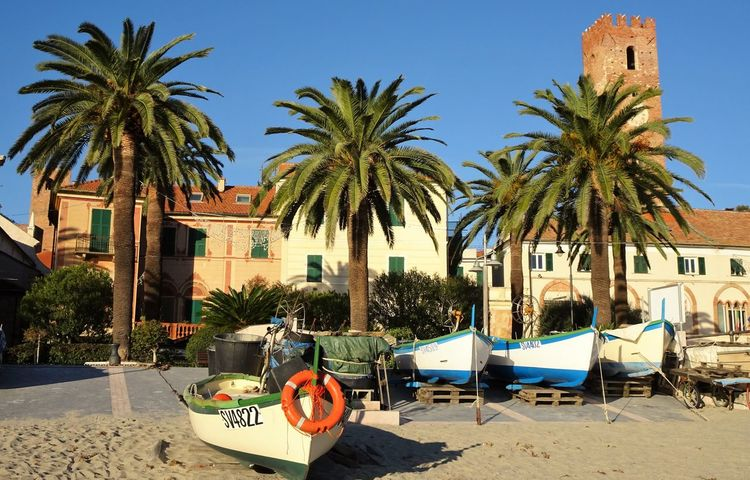 Architecture Beach Beach, Boats Building Exterior Built Structure Clear Sky Day Fisher Boats Holiday Italia Italian Beach Italian Holiday Italy Italy❤️ Italy🇮🇹 Liguria Liguria,Italy No People Outdoors Palm Tree Sea Sky Tree V