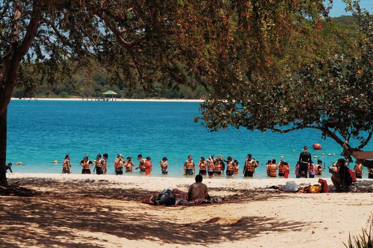 Tree Water Real People Crowd Group Of People Large Group Of People Plant Nature Land Beach Relaxation Day Leisure Activity Men Women Lifestyles Trip Sea Holiday Outdoors