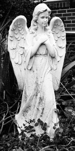 Bw Photography Angels Statue Blackandwhite Memorial Outdoors Abandoned Things
