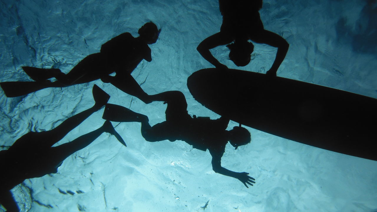 Low Angle View Of Silhouette Scuba Drivers Swimming In Sea