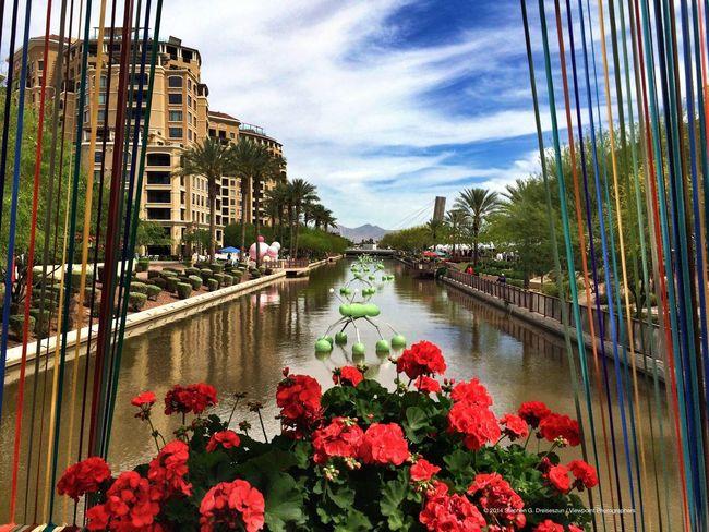 Canal Convergence in Scottsdale, AZ. Eyeem Phoenix Meetup2 Scottsdale Public Art