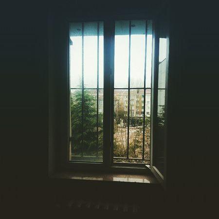 Nowplaying 🎧🎵 Yağmur - Bülent Ortaçgil 🎶🎧 City Istanbul Citylife window rain bohemian melancholy wind vscocam vsco_hub vsco