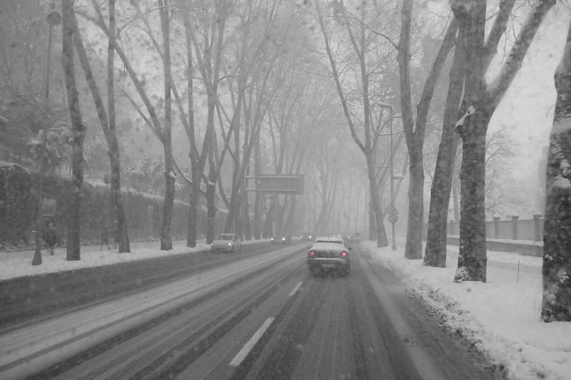 Snow storm on the streets of Istanbul Car Cold Winter In Istanbul Empty Streets Istanbul Turkey Kemeraltı Street Kemeraltı Street In Snow Storm No People No Traffic Jam Outdoors Road Snow On The Street Snow Storm 2016 Snow Storm On The Street Snowing Transportation Tree Winter Wintertime