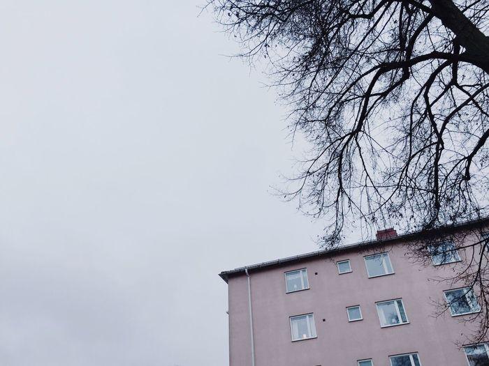 Grayscale Sky