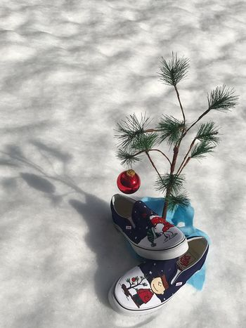 I never thought it was such a bad little tree. It's not bad at all, really. Maybe it just needs a little love. And a pair of Vans. Shadow Vansshoes Vansdaily Vanslife Peanutsvans CharlieBrownChristmas High Angle View Day Christmas Decoration Tree