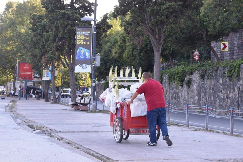 Street Transportation Tree Road City Life City Street Besiktas Istanbul Turkey Türkiye Human Body Part Ig City Land Vehicle Outdoors Men Full Length Occupation Architecture Day One Person Adult Only Men One Man Only People