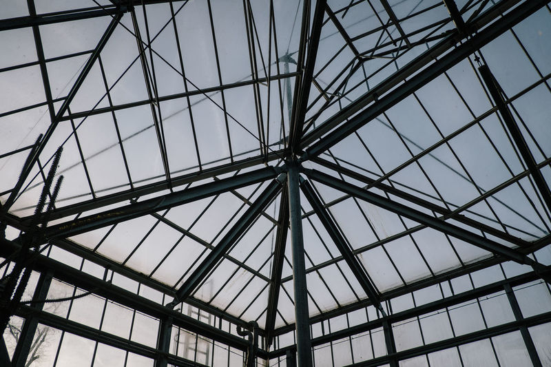 Hortus Botanicus No People Low Angle View Built Structure Pattern Sky Architecture Ceiling Full Frame Backgrounds Indoors  Day Geometric Shape Skylight Glass - Material Shape Design Transparent Nature Metal Architecture And Art Roof Beam