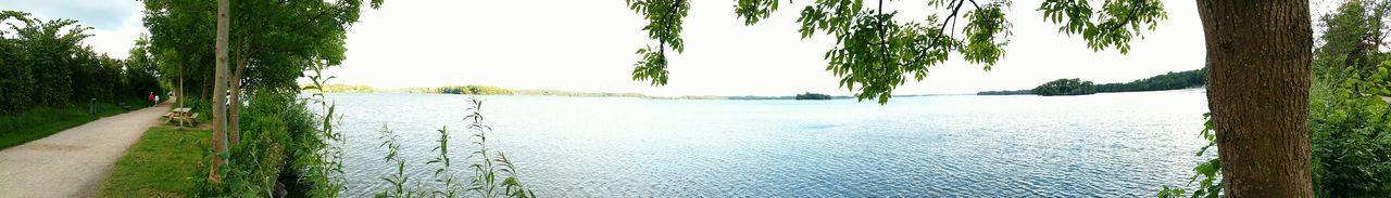 Water Tree Nature Growth Day Outdoors Plant No People Beauty In Nature Sky Freshness Clear Sky Panoramic Photography Plönersee Plöner See Schleswig-Holstein Power In Nature Panorama View Horizon Over Water Scenics Vacations Tree Lifestyles Beauty In Nature Growth