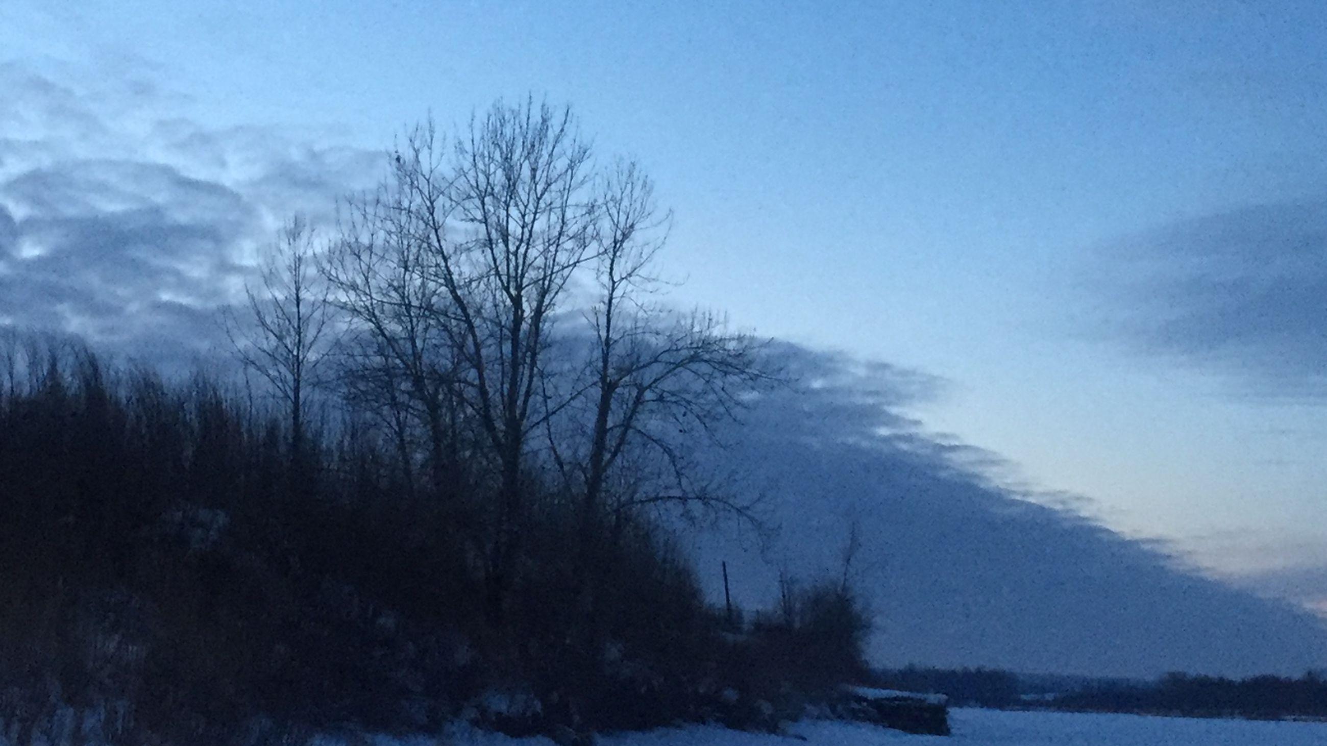 bare tree, winter, snow, cold temperature, tranquility, tranquil scene, tree, scenics, beauty in nature, sky, nature, weather, landscape, season, branch, non-urban scene, covering, frozen, cloud - sky, field