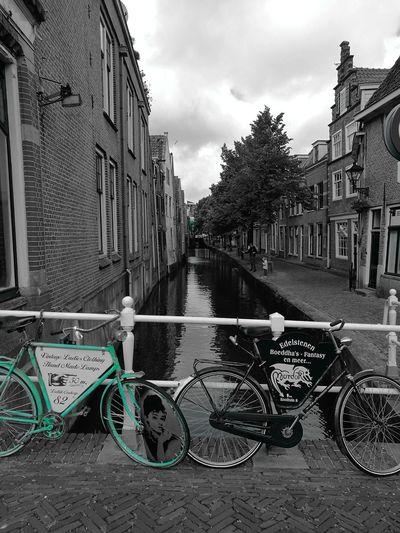 Holland Bicycle Mode Of Transport Transportation Holland Edam No People Sommergefühle Outdoors Holidays ☀ Bike Bikesaroundtheworld Bikes Green Blackandwhite Black And White Black & White Your Ticket To Europe