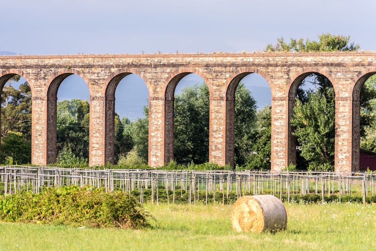 Aqueduct in tuscany, Italy Aqueduct Ancient Arch Architectural Column Architecture Built Structure Damaged Day Field Grass History Nature No People Old Outdoors Plant Ruined Sky Sunlight The Past Tree Weathered