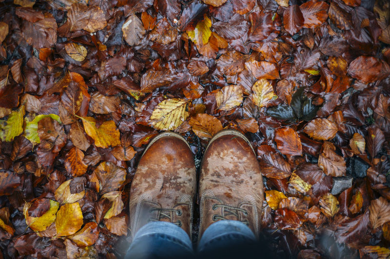 Standing Foliage Autumn Autumn🍁🍁🍁 Autumn Colors Autumn Leaves Boots Looking Down On The Ground Wet