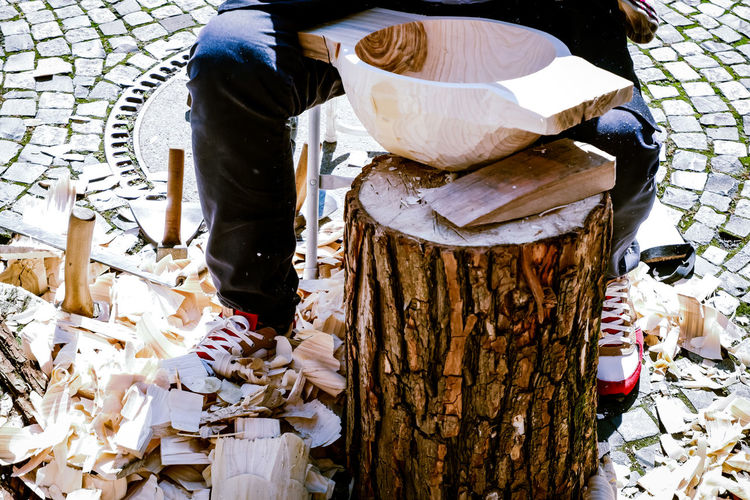 Low section of man working on tree trunk
