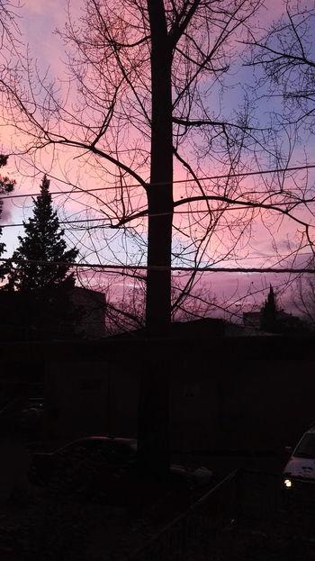 Sky Colors Colorsky Calm Idyllic