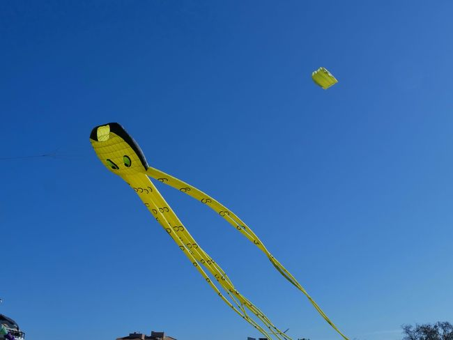 Paint The Town Yellow Blue Cerf Volant Day Low Angle View No People Outdoors Sky Postcode Postcards