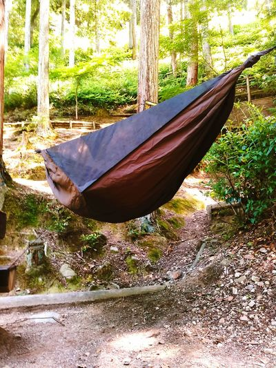 Daycamp Hennessy Hammock Day No People Tree Outdoors Nature Water Sky