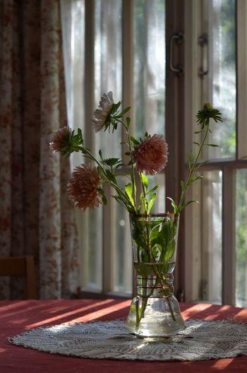 Flower vase on table against window