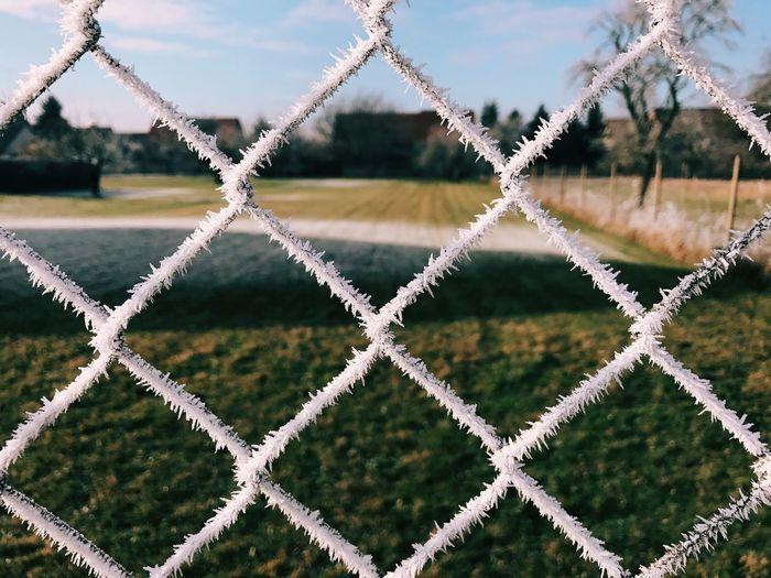 Grassy field seen through frosty chainlink fence