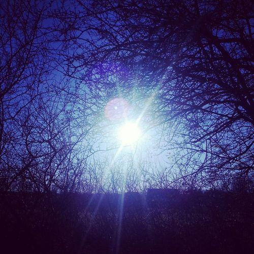 Sun Nature Sonne Blue Pics By Mr_badabing