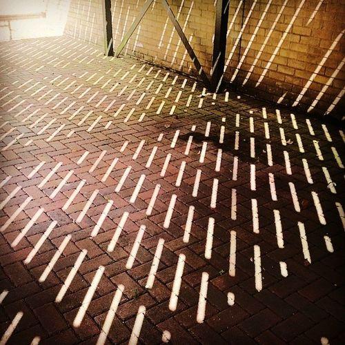 Shadow Light Beautiful Art perfect sun Perfect Perfect Sun Sun The Street Photographer - 2015 EyeEm Awards