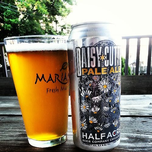 Yup its just that kind of perfect day Halfacre DaisyCutter Paleale Summer ChiBrew