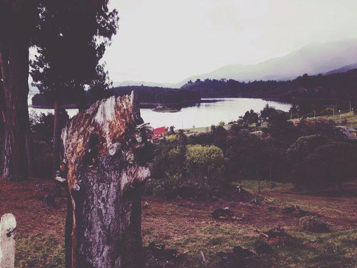 Nature Beautiful Lake