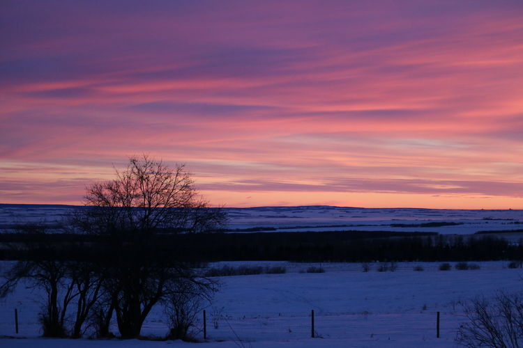 Sunrise Beauty In Nature Beautiful Morning Colors Alberta Canada Cold Temperature Winter Outdoors Landscape