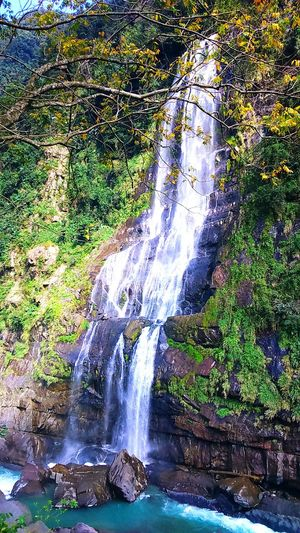 Wulaiwaterfall Waterfall Amazing Taiwan Beautiful Nature Beauty In Nature The View And The Spirit Of Taiwan 台灣景 台灣情 Mountain Power In Nature ScenicsAmazing View Leisure Activity Motion Splashing No People Water Outdoors Close-up Tree Day