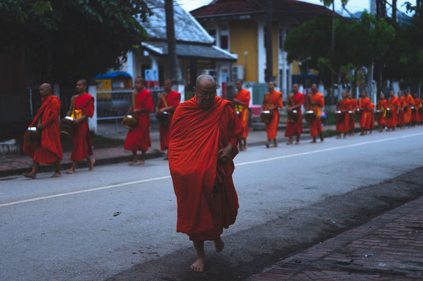 ALMS Luang Prabang, Laos Alms Giving Alms Giving Ceremony Buddhism Buddhist Monks Buddhist Temple Laos Laos Buddhis Laos Street Laos Street Photo Laos Street Photography Laos Street Scene Line Of Monks Luang Prabang Monks Monks Walk Monks Wearing Orange Robes Old Monk Orange Robes Roadside Roadsidephotography Senior Monk Street Photography Street Scene