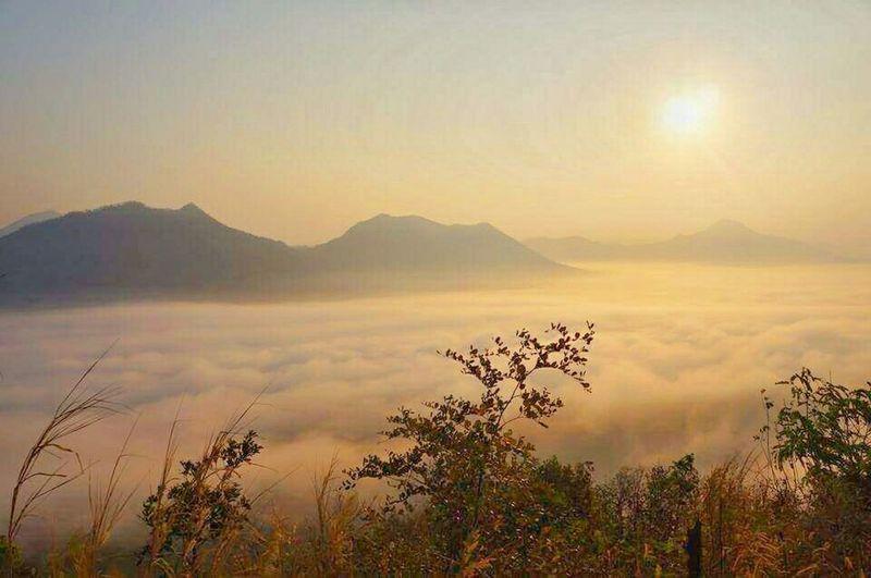 foggy sea @Phu Tork, Loei, THAILAND Traveling