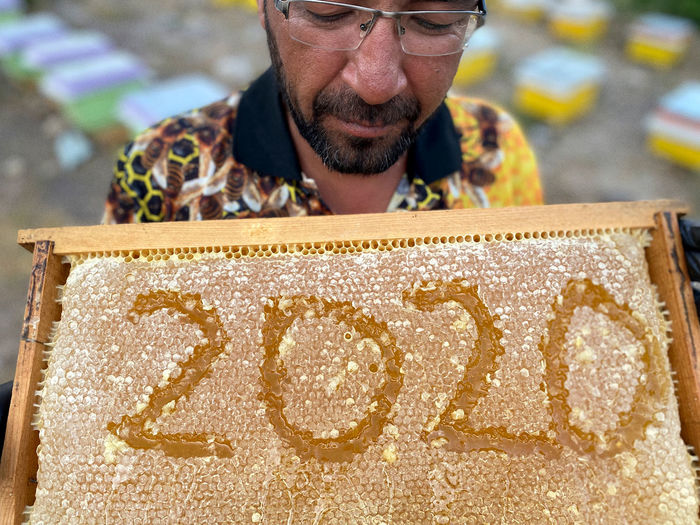 Mature man holding honeycomb with numbers