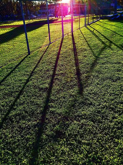 Afternoon Day Fence Fences Field Fields Grass Green Color Late Afternoon Late Afternoon Light Late Afternoon Shadows Late Afternoon Sun Long Shadows Nature No People Outdoors Setting Sun Shadow Shadows Shadows & Light Shadows On The Ground Sunlight Sunlight And Shadow At The Park California