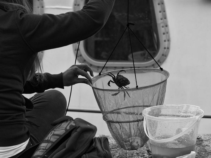 Crabbing Crab Quayside Close-up Crabbing Day Fishing Holding Human Hand Indoors  Men Occupation One Person People Real People Skill  Technology Working Workshop