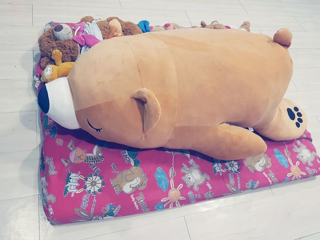 a big bear. Thailand Wood Beautiful Bear Dall Thailand Bed Floor EyeEm Selects Lying Down People Adult One Person Day Adults Only Outdoors Close-up Freshness