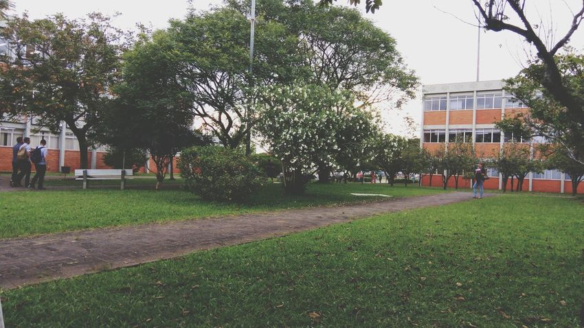 Ulbra Canoas