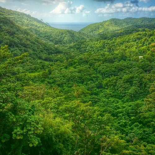 Hdr_beautiful_landscapes Hdr_pics Caribbean_beautiful_landscapes Grenada Ilivewhereyouvacation Islandlivity EarthCaptures Exploringtheglobe Skyporn Nature