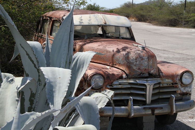 Cactuar Car Wreck Day Land Vehicle No People Off Road Old Fashioned Oldtimer Outdoors Rusty Summertime Transportation